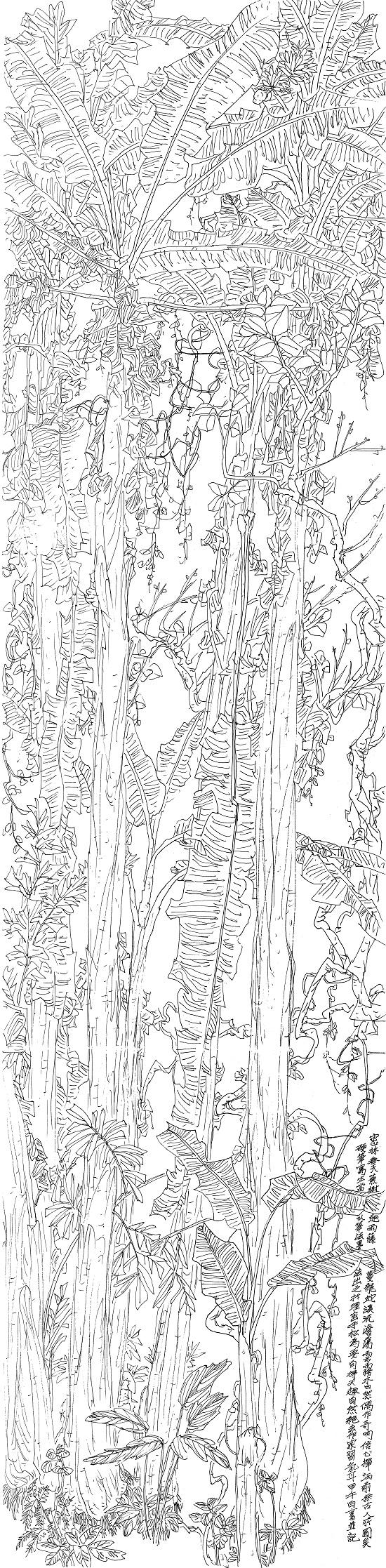 热带雨林线描写生集,这需要毅力和功力,需要对雨林植物的全面认识